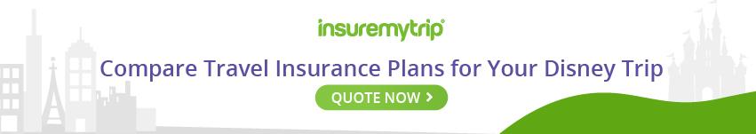 Disney Vacations Travel Insurance Tips